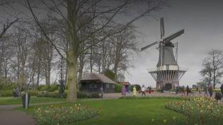 parc Pays Bas (FRANCEINFO)