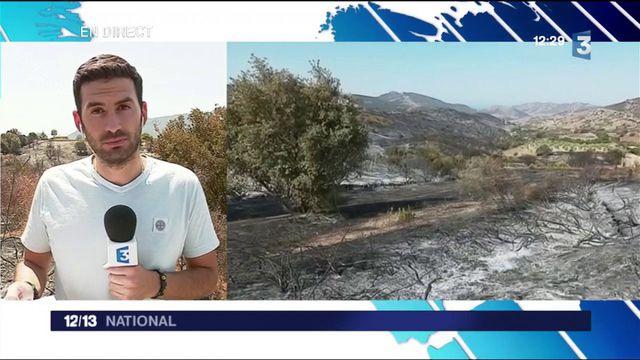 Incendie en Corse : la commune d'Appietto est passée près de la catastrophe
