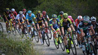 Image du peloton pendant la 14e étape du 105e Tour de France entreSaint-Paul-Trois-Châteaux (Drôme) et Mende (Lozère), le 21 juillet 2018. (DAVID STOCKMAN/BELGA MAG)