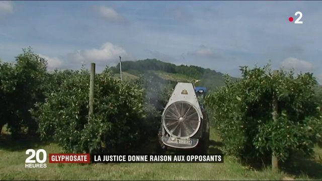 Glyphosate : la justice retire un herbicide du marché en le jugeant cancérogène