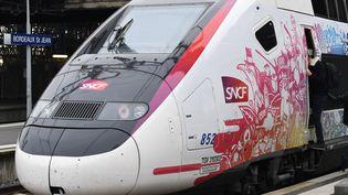 Le TGV Océane, le 11 décembre 2016, à Bordeaux (Gironde). (MEHDI FEDOUACH / AFP)