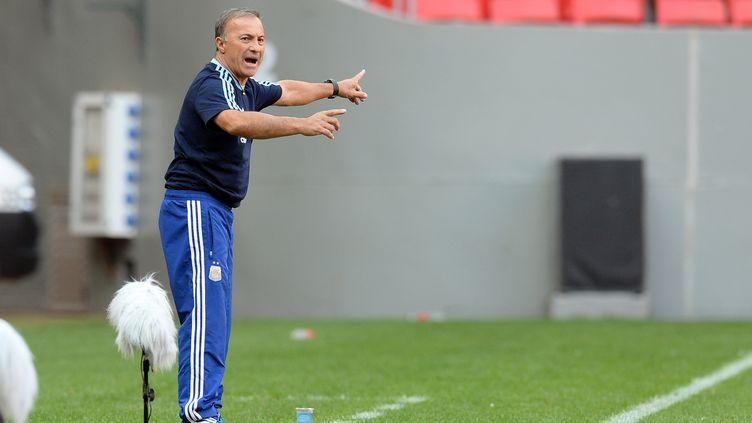 Le nouvel entraîneur de la sélection argentine, Julio Olarticoechea (EVARISTO SA / AFP)