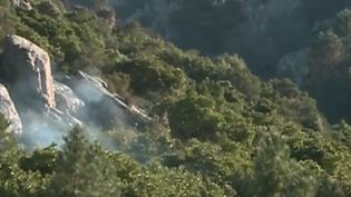 Depuis le samedi 23 février, des incendies ravagent la Corse, portés par des vents qui compliquent l'intervention des pompiers. (CAPTURE D'ÉCRAN FRANCE 3)