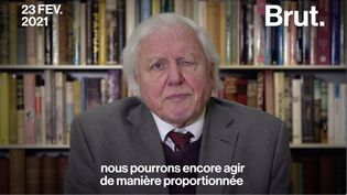 VIDEO. Le vibrant appel du naturaliste David Attenborough aux dirigeants du monde entier (BRUT)