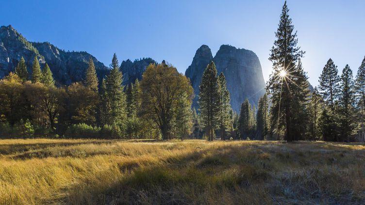 Le parc national du Yosemite (Californie, Etats-Unis), le 25 février 2016. (MAXPPP)