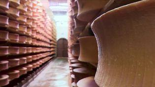 Beaufort : comment fabriquer la fine-fleur du fromage ? (FRANCE 2)