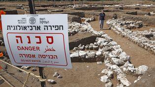 L'archéologue israélienne Dina Shalem se promène sur le site archéologique de En Esur (Ein Asawir), tout près de la ville de Harish, où ont été exhumés les restes d'une ville de 5000 ans. (JACK GUEZ / AFP)