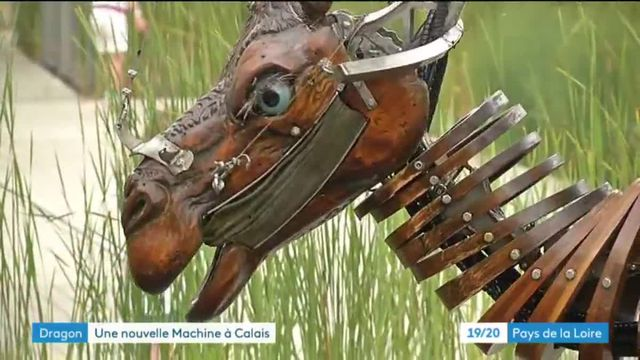 Le Dragon de Nantes à Calais