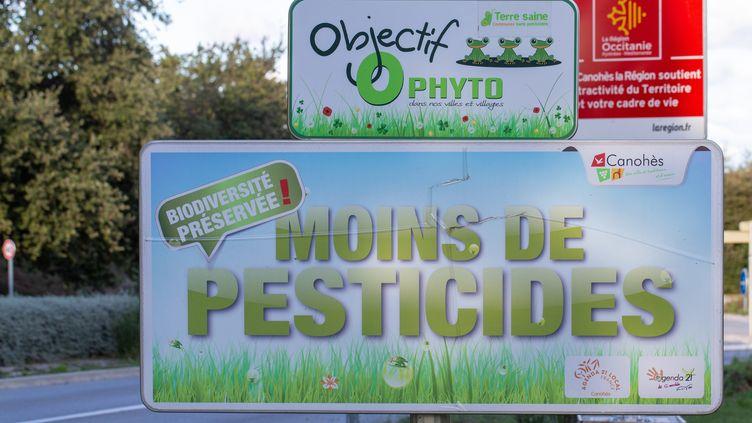 """A l'entréedu village de Pollestres (Pyrénées-Orientales), un panneau porte la mention """"Biodiversitépréservée, moins de pesticides"""", le 1er novembre 2019. (VINCENT BRUGERE - CELINE ISAERT / AFP)"""