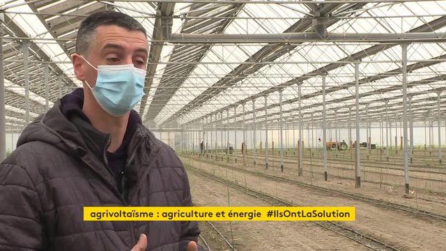 Dans les Bouches-du-Rhône, une centrale solaire photovoltaïque protège une culture d'asperges du froid