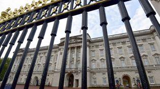 Buckingham Palace le 24 octobre 2014 à Londres. (TOBY MELVILLE / REUTERS)