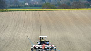 Un agriculteur sème du maïs enEure-et-Loir, en avril 2021. Photo d'illustration. (JEAN-FRANCOIS MONIER / AFP)
