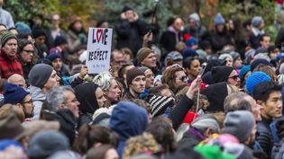 Dimanche 20 novembre, des New-Yorkais ont manifesté dans un parc de Brooklyn, à New York, après l'apparition d'un graffiti représentant une swastika. (MICHAEL NIGRO/PACIFIC PRE/SIPA / SIPA)