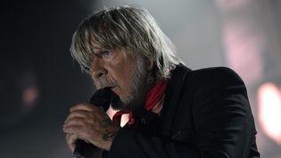 Renaud en concert à Dunkerque, le 28 avril 2017  (PHOTOPQR/VOIX DU NORD/MAXPPP)