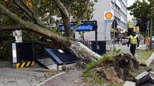 Un arbre déraciné par la tempête Xavier à Berlin, le 5 octobre 2017. (MAURIZIO GAMBARINI / DPA)