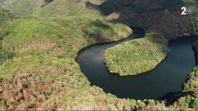 Impressions d'ailleurs : quand l'Auvergne prend des airs l'Amazonie