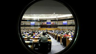 Le Parlement européen lors d'une session plénière, le 2 mars 2017 (Yves Herman / Reuters)