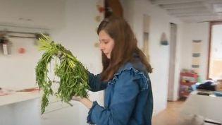 Suzy Gallo a remis au goût du jour les teintures végétales. Elle utilise les noyaux d'avocats ou encore les fanes de carottes pour créer des couleurs de vêtements. (FRANCE 2)