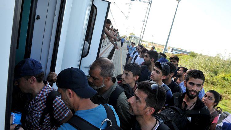 Des migrants montent à bord d'un train dans la gare d'Ilaca (Croatie), le 17 septembre 2015. (ELVIS BARUKCIC / AFP)
