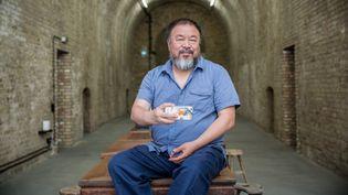 L'artiste Ai Wei pose dans son atelier à Berlin, le 6 août 2015  (MICHAEL KAPPELER / DPA / dpa Picture-Alliance/AFP)