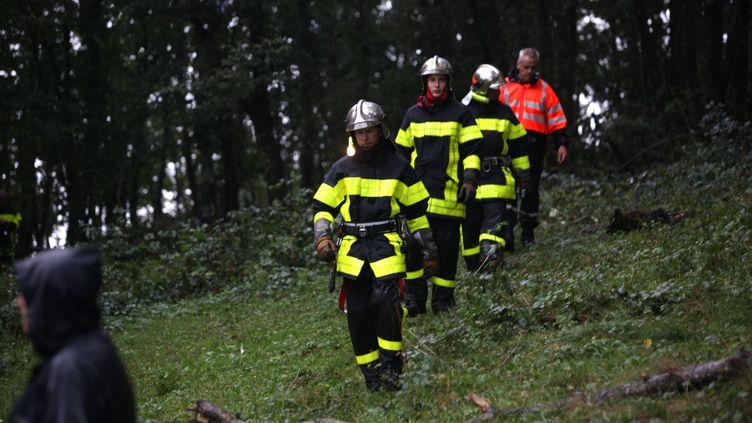 Pompiers et gendarmes ont été mobilisés sur les lieux du crash. (LIONEL VADAM / MAXPPP)