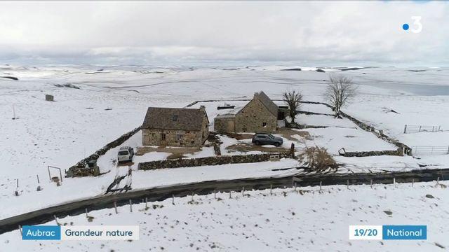 Aubrac : le 53e parc naturel régional de France