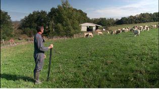 """PAC.Les agriculteurs vont-ils sauver la planète ? (CAPTURE D'ÉCRAN """"PIÈCES A CONVICTION"""" / FRANCE 3)"""