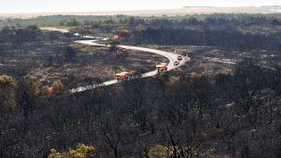 L'incendie dans le massif de la Clape a ravagé 300 hectares de pinèdes, le 4 juillet 2021. (PHILIPPE LEBLANC / MAXPPP)