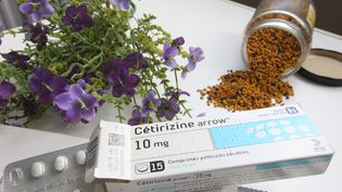 Un médicament antihistaminique utilisé dans le traitement de certaines allergies. (FRED HASLIN / MAXPPP)
