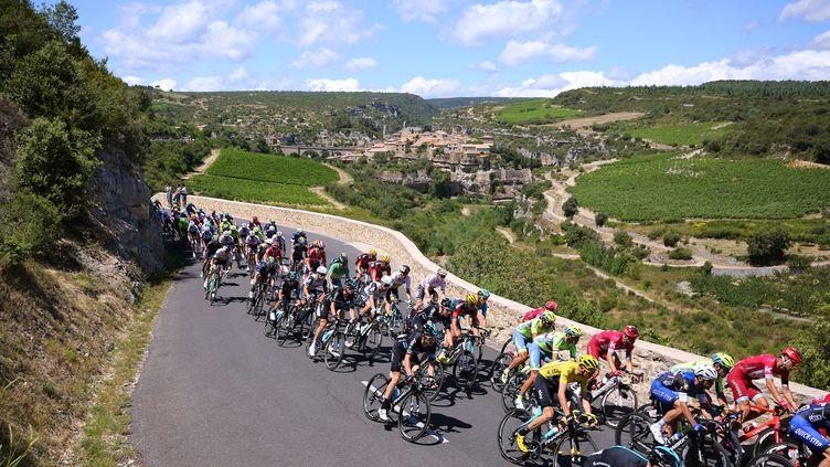 Le peloton du Tour de France (DE WAELE TIM / TDWSPORT SARL)
