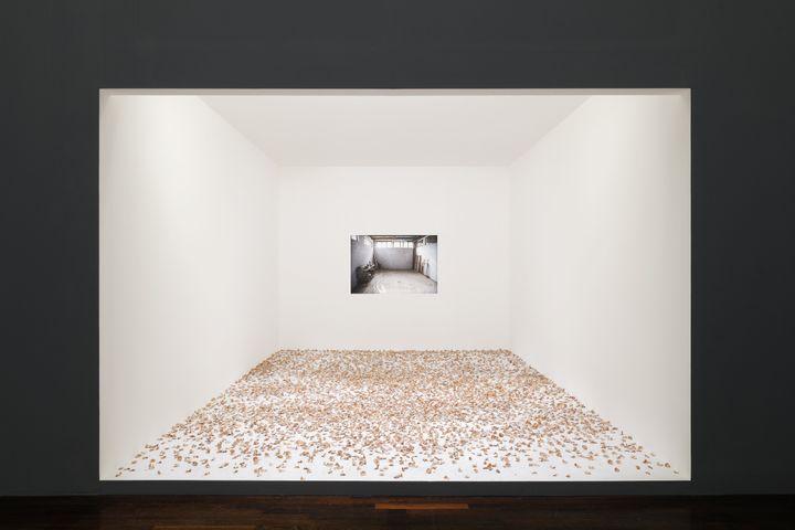 Taysir Batniji, Hannoun, 1972 – 2009 (actualisation 2021). Performance/installation.Vue de l'exposition «Quelques bribes arrachées au vide qui se creuse», MAC VAL 2021. (Photo © Aurélien Mole. © Adagp, Paris 2021.)