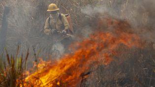 Les membres de la brigade de pompiers de l'Institut brésilien de l'environnement combattent les incendies dans une ferme près de la ville de Novo Progresso, dans le sud de l'État de Para, le 21 août 2020. (ERNESTO CARRICO / NURPHOTO / AFP)