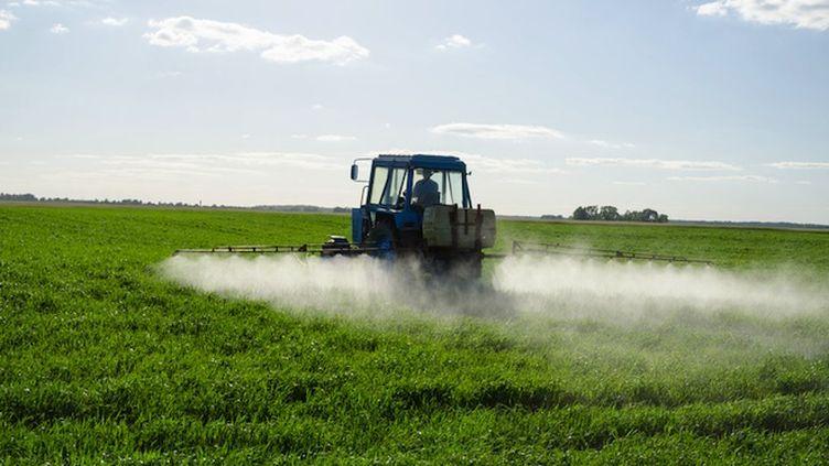 Le glyphosate est le principe actif du Roundup et du Ranger Pro. (Photo © Sauletas - Fotolia)