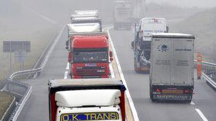 Des camions circulent près deParay-le-Monial (Saone-et-Loire), le 3 février 2011. (THIERRY ZOCCOLAN / AFP)
