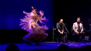 Festival Arte Flamenco 2016  (Capture d'écran France 3/Culturebox)