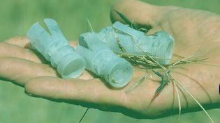 Des bourres de cartouches en plastique, retrouvées le 24 août 2020 à Chambles (Loire). (THOMAS BAIETTO / FRANCEINFO)