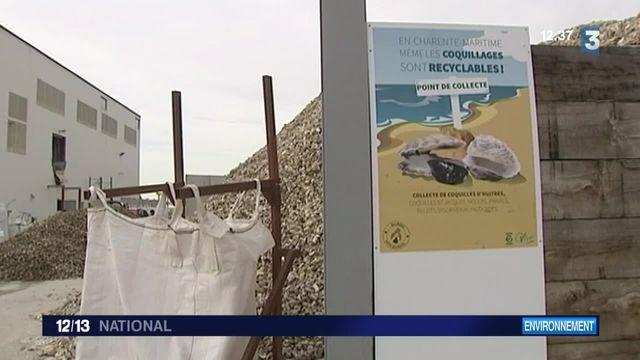 Près de La Rochelle, une entreprise recycle les coquilles d'huîtres