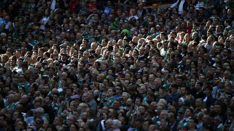 Des supporters irlandais (ADRIAN DENNIS / AFP)