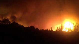 Au Portugal, les feux de forêt qui se sont déclenchés le 15 octobre ont fait au moins 36 morts et 7 disparus. (REUTERS)