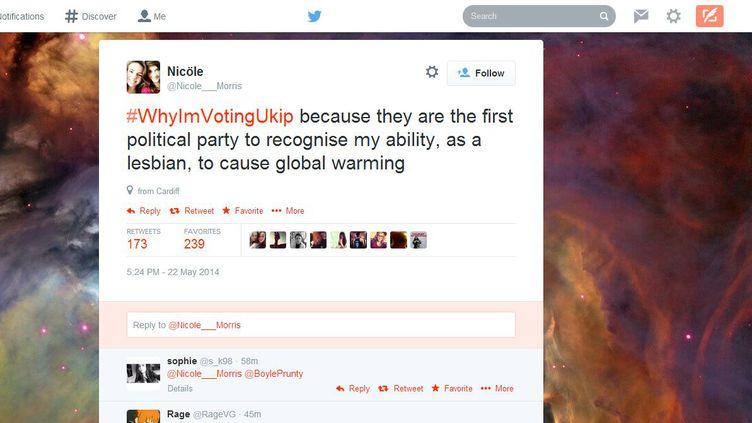 Capture d'écran d'un compte Twitter moquant le hashtag #PourquoiJeVoteUkip, réalisée le 22 mai 2014. (NICOLE MORRIS / TWITTER)