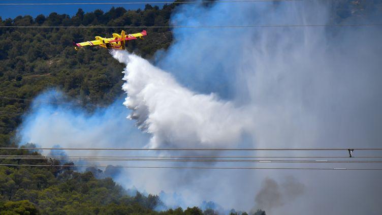 Un Canadair dans le sud de la France. (BERTRAND LANGLOIS / AFP)
