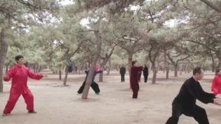 Le taï-chi, cette discipline qui se pratique comme un sport et une méditation, ade plus en plus d'adeptes en France. (France 2)
