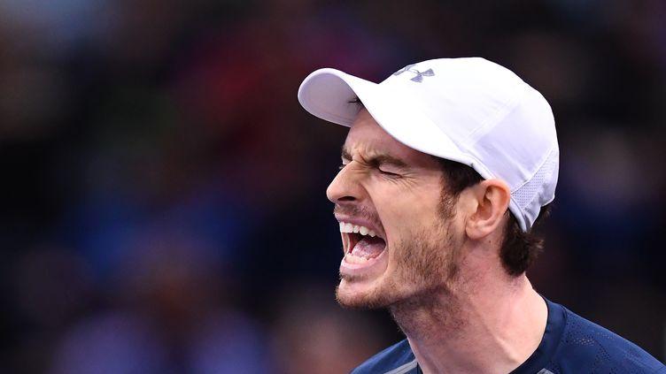 La rage de vaincre d'Andy Murray. (FRANCK FIFE / AFP)