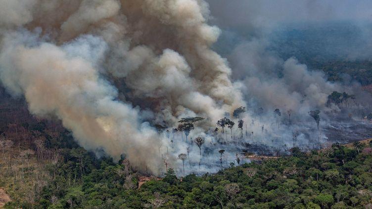Un incendie dans la municipalité de Candeias do Jamari, dans l'Etat de Rondonia, au Brésil, le 24 août 2019. (VICTOR MORIYAMA / GREENPEACE)
