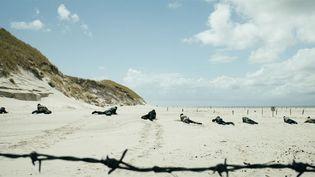"""""""Les Oubliés"""" de Martin Zandvliet : après la guerre, en 1945, de jeunes soldats allemands doivent déminer la côte danoise.  (Koch Films GmbH)"""