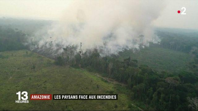 Amazonie : les fermiers continuent de défricher par le feu