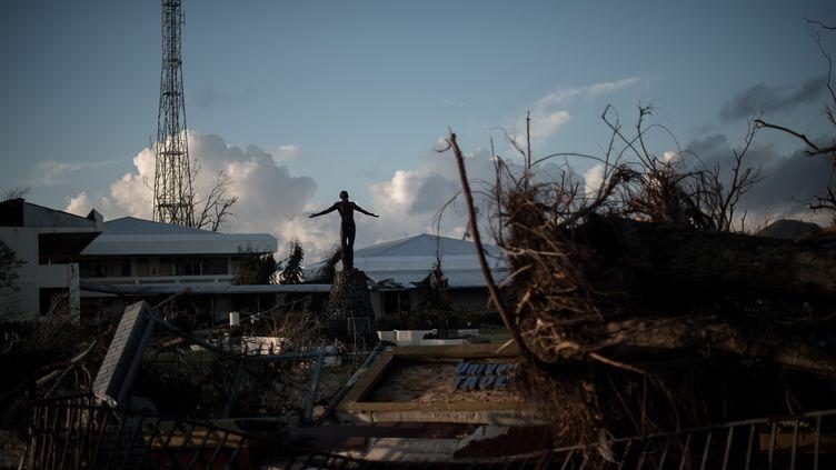 Une statue dans les débris de l'université de Tacloban, sur l'îlede Leyte(Philippines), le 14 novembre 2013. (PHILIPPE LOPEZ / AFP)