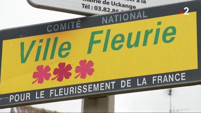 """Moselle : deux communes renoncent au label """"Villes et Villages fleuris"""""""