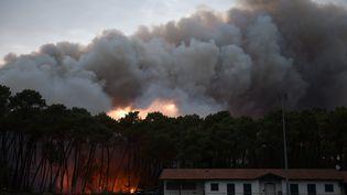 Un incendie àAnglet (Pyrénées-Atlantiques), le 30 juillet 2020. (GAIZKA IROZ / AFP)