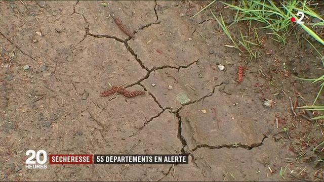 Sécheresse : 55 départements placés en alerte
